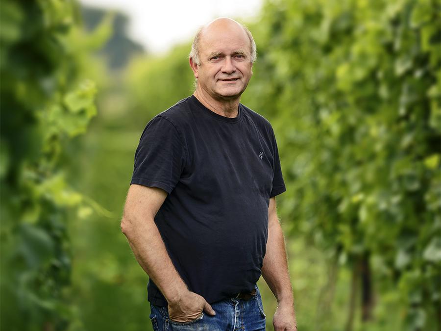 andré dierickx wijnbouw opwijk